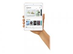 Apple iPad mini 64GB  Silber