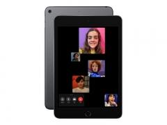 Apple iPad mini 256 GB LTE GPS Space Grau